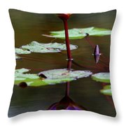 Rainy Day Lotus Flower Reflections IIi Throw Pillow