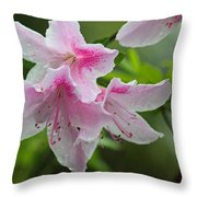 Rainy Day Series - Pink On Pink Azaleas Throw Pillow