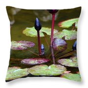 Rainy Day Water Lily Reflections I Throw Pillow