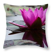 Rainy Day Water Lily Reflections 6 Throw Pillow