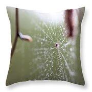 Rainy Day Web Throw Pillow
