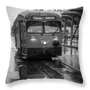 Rainy Daze Throw Pillow