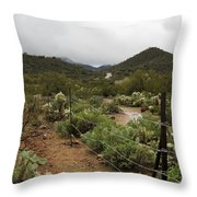 Rainy Desert Throw Pillow