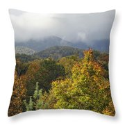 Rainy Fall Day In The Mountains Throw Pillow