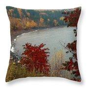 Rainy Falltastic Day Throw Pillow