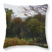 Rainy Forest Throw Pillow