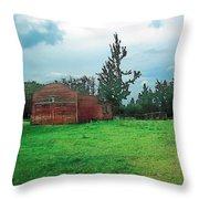 Rainy Pasture Throw Pillow