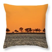 Ram Island Throw Pillow
