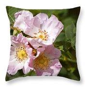 Rambling Rose 3 Throw Pillow