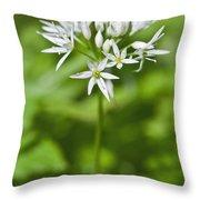 Ramsons Wild Garlic Allium Ursinum Throw Pillow