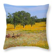 Ranch And Wildflowers And Old Implement 2am-110556 Throw Pillow