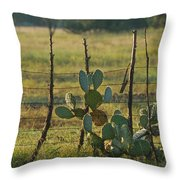Ranch Cactus Throw Pillow