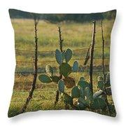 Ranch Cactus Throw Pillow