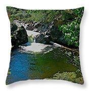 Rancheria Falls-yt Throw Pillow