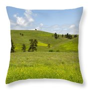 Rangelands Of Custer State Park Throw Pillow