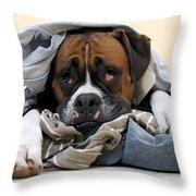 Ranger Danger Fresh Throw Pillow by Stephanie McDowell