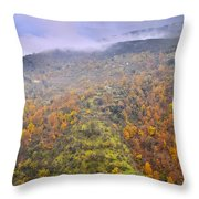 Raniy Days In Automn Throw Pillow