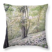 Saltburn Valley Gardens - Ransome Wood Throw Pillow