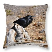 Ranting And Raven Throw Pillow