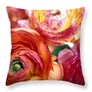 Ranunculus Close-up Throw Pillow