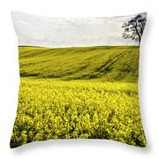 Rape Landscape With Lonely Tree Throw Pillow