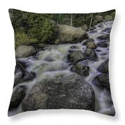 Rapid Change Throw Pillow