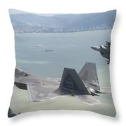 Raptor And Eagle Throw Pillow