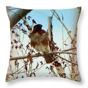 Raptor Perched Throw Pillow