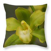 Rare Green Orchid Throw Pillow