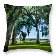 Rare View From Above Throw Pillow