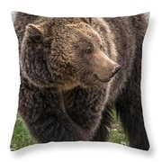 Raspberry In The Spring Throw Pillow