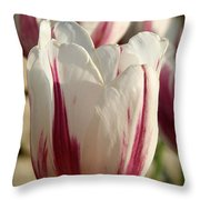 Raspberry Vanilla Tulip Throw Pillow