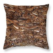 Rattle Snake Round-up Throw Pillow
