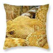 Rattler's Repose Throw Pillow