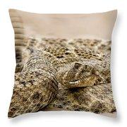 Rattlesnake 1 Throw Pillow