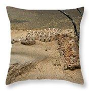 Rattlesnake Arizona Desert Throw Pillow