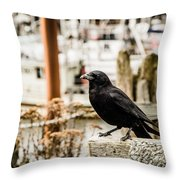 Raven Ucluelet  Throw Pillow