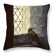 Raven By Window Throw Pillow