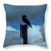 Raven Checking The Wind Throw Pillow