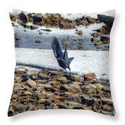 Raven Departs Throw Pillow
