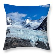 Raven Glacier 2 Throw Pillow