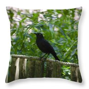 Raven In The Wild Throw Pillow