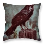 Raven Perched On A Post Throw Pillow