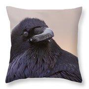 Raven Portrait Throw Pillow