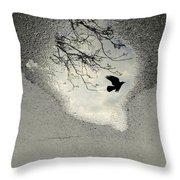 Raven Reflection Throw Pillow
