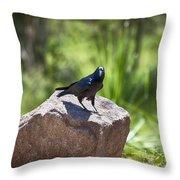 Raven Rock Throw Pillow