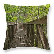 Ravine Gardens - Florida's Hidden Treasure Throw Pillow by Christine Till