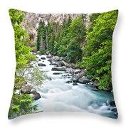 ravine in Verney Dora Throw Pillow