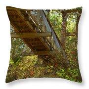 Ravine State Gardens Palatka Florida Throw Pillow