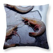 Raw Shrimp Throw Pillow